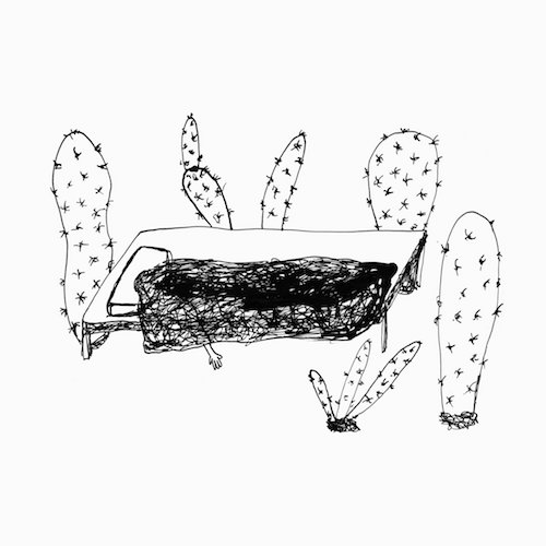 MAGDA DROZD:  Songs For Plants
